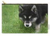Curiousity Filled Look In The Face Of An Alusky Carry-all Pouch