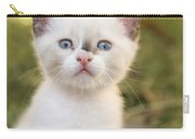 Cute 2 Month Old White Kitten Carry-all Pouch