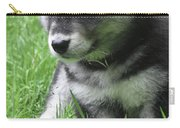 Cute Alusky Puppy Dog Sitting In Green Grass Carry-all Pouch