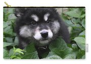 Cute Alusky Puppy In A Bunch Of Plant Foliage Carry-all Pouch