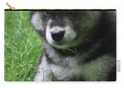 Cute Fluffy Alusky Puppy Sitting Up In A Yard Carry-all Pouch
