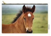 Cute Foal Carry-all Pouch