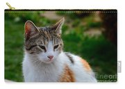 Cute Grey White And Orange Cat Poses And Gazes Carry-all Pouch