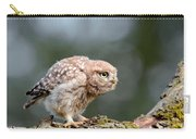 Cute Little Owlet Carry-all Pouch