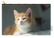 Cute Orange Kitten With Large Paws In Sunny Day Carry-all Pouch