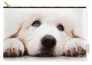 Cute White Puppy Dog Lying And Looking Up. Polish Tatra Sheepdog Carry-all Pouch