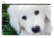 Cute White Puppy Dog Portrait. Polish Tatra Sheepdog Carry-all Pouch
