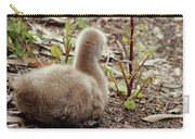 Cygnet I Carry-all Pouch