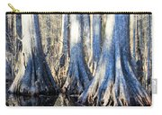 Cypress Reflection Carry-all Pouch