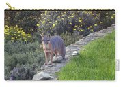 D-a0037 Gray Fox On Our Property Carry-all Pouch
