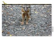 D-a0051-dc Gray Fox Pup Carry-all Pouch