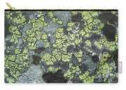 D07343-dc Lichen On Rock Carry-all Pouch