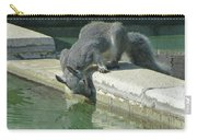 D2b6341-dc Gray Squirrel Drinking From The Pool Carry-all Pouch