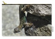 D7b6335 Western Fence Lizard, Male, Sonoma Mountain, Ca Carry-all Pouch