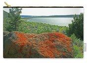 Da5869 Lichen Covered Rock Carry-all Pouch