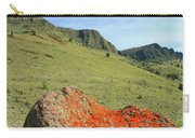 Da5872 Lichen Covered Rock Below Abert Rim Carry-all Pouch