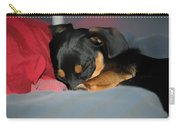 Dachshund Dog, Pug Dog, Good Time On Bed, Sleeping Carry-all Pouch