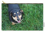 Dachshund Looking At Camera Smiling  Carry-all Pouch