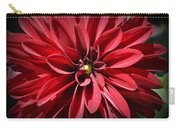 Dahlia Radiant In Red Carry-all Pouch