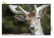 Daim Haute Savoie Carry-all Pouch