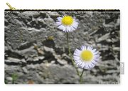 Daisy Fleabane Flowers Carry-all Pouch