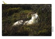 Dall Sheep Ram Carry-all Pouch