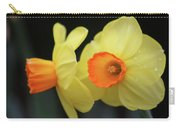 Dallas Daffodils 07 Carry-all Pouch