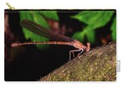 Damselfly 006 Carry-all Pouch
