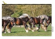 Dance Of The Gypsy Carry-all Pouch