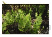 Dancing Ferns Carry-all Pouch