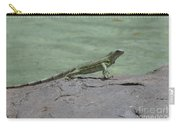 Dancing Iguana On Rocks Along The Water's Edge Carry-all Pouch