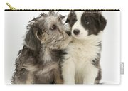 Dandy Dinmont Terrier And Border Collie Carry-all Pouch