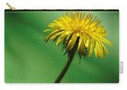 Dandy Green Carry-all Pouch by Barbara St Jean