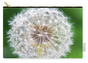Dandylion Carry-all Pouch