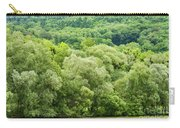 Danube Green Carry-all Pouch