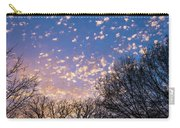 Dappled Sunset-1545 Carry-all Pouch
