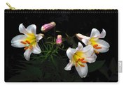 Dark Day Bright Lilies Carry-all Pouch