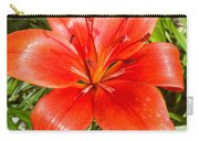 Dark Orange Red Lily II Carry-all Pouch