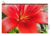 Dark Orange Red Lily Carry-all Pouch