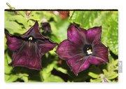 Dark Purple Petunia Carry-all Pouch