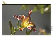 Dark Red Day Lily With Sun Shining Through I Carry-all Pouch