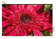 Dark Red Gerbera Daisy Carry-all Pouch