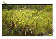 Darlingtonia Plants Grow Beside Carry-all Pouch
