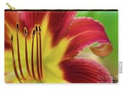 Day Lily Macro Carry-all Pouch
