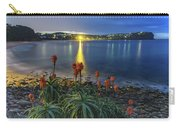 Daybreak And Cloudy Seascape And Aloe Vera Carry-all Pouch