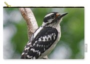 Daydreaming Downy Woodpecker Carry-all Pouch