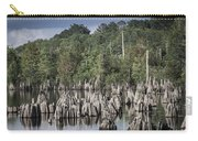 Dead Lakes Cypress Stumps Carry-all Pouch