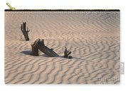 Death Valley Morning Carry-all Pouch by Sandra Bronstein