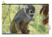 Deceptive Paradise Carry-all Pouch by Valerie Ornstein
