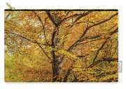 Deciduous Forest In The Autumn Carry-all Pouch